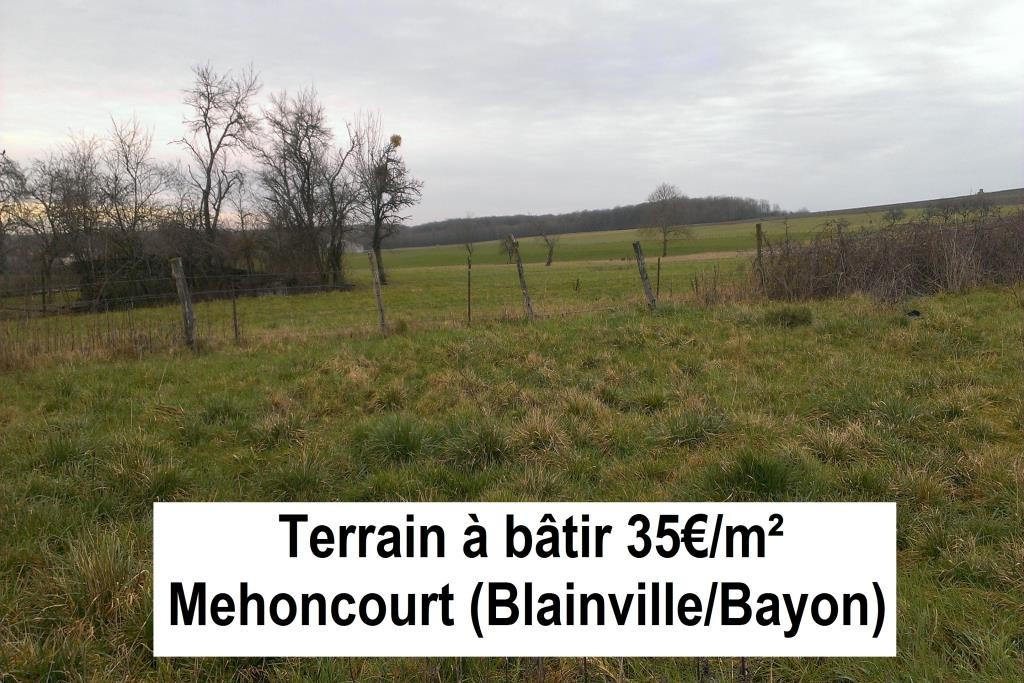 Vente Terrain mehoncourt