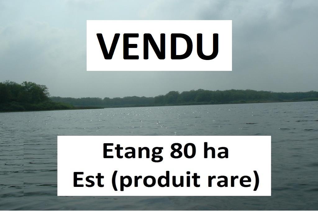 Vente Etangs nancy