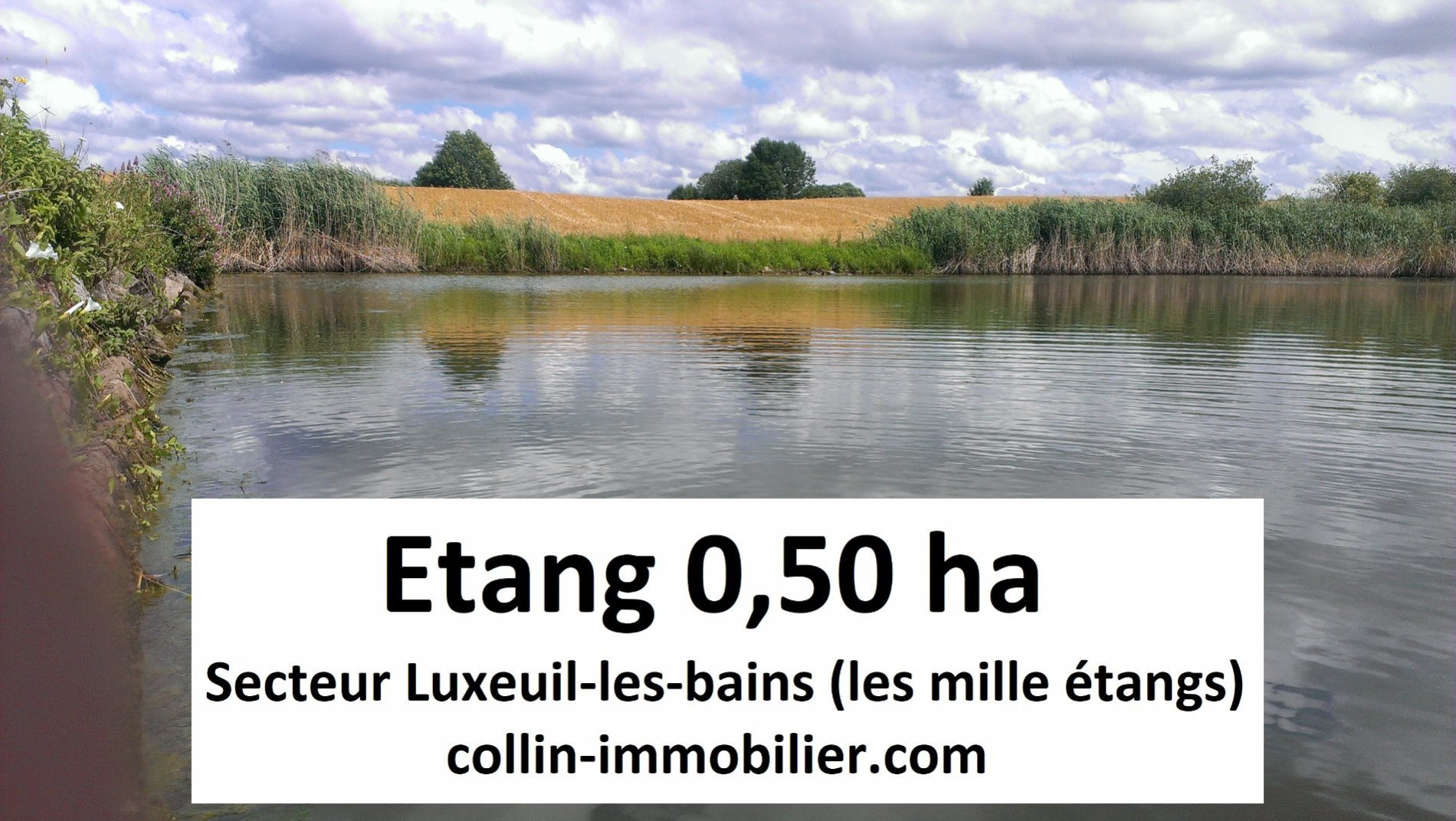 Vente Terrain luxeuil les bains